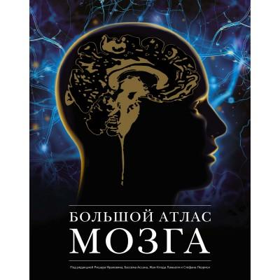 Большой атлас мозга
